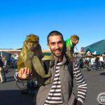 fas gezi fotoğrafları
