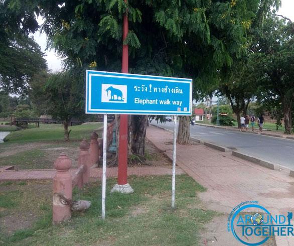 kutsal şehir ayutthaya