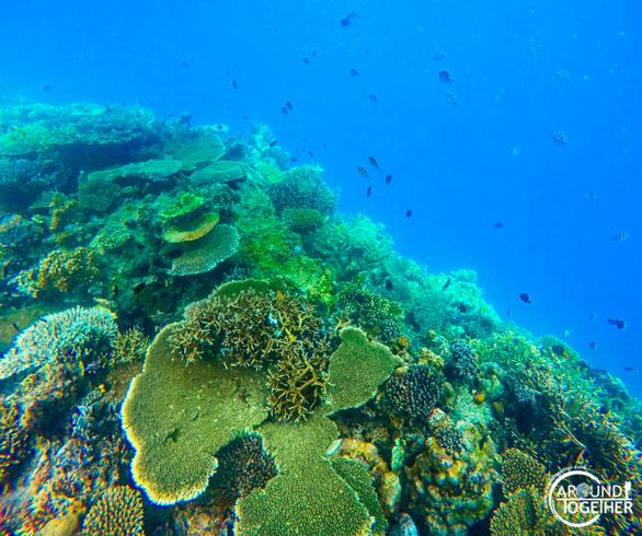 el nido adası fotoğrafları
