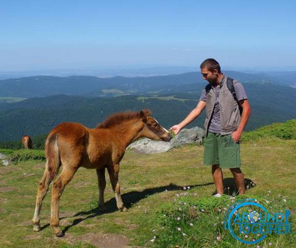 Bulgaristan rila dağı